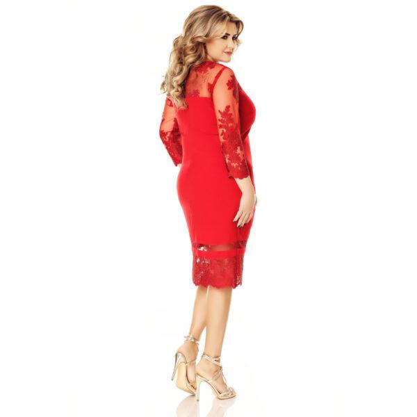 Rochie Plus Size Gratiela Rosie - Rochie de seara - TTBoutique